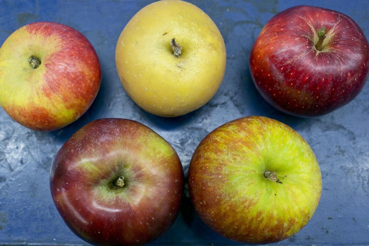 Fruit And Vegetable Market Report October 2014 Apples