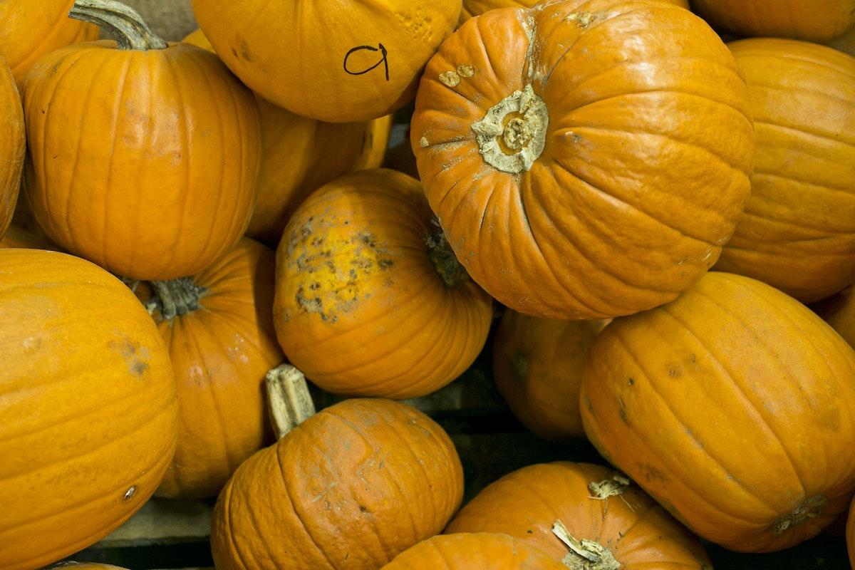 Fruit And Vegetable Market Report October 2014 Pumpkins