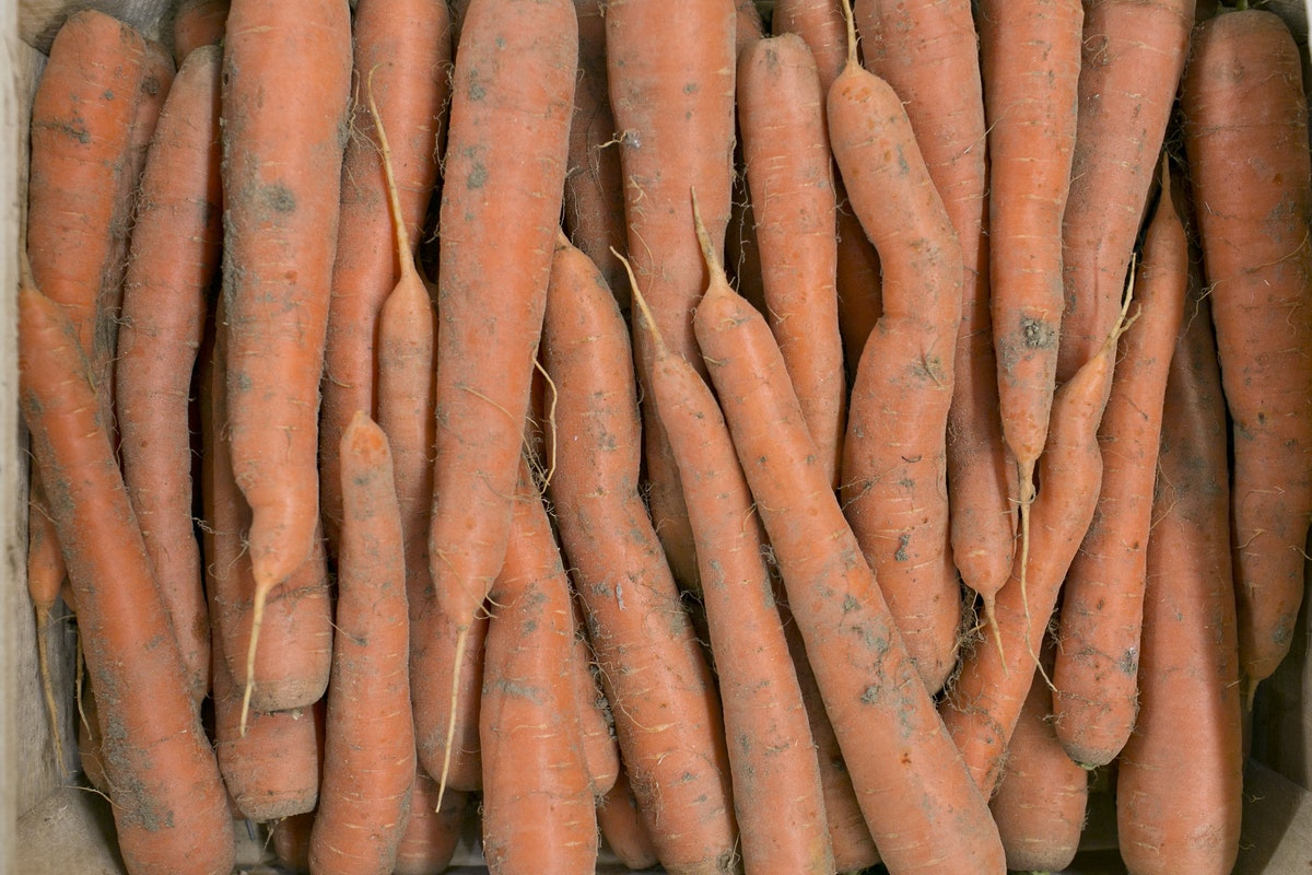 Fruit And Vegetable Market Report October 2014 Sand Carrots