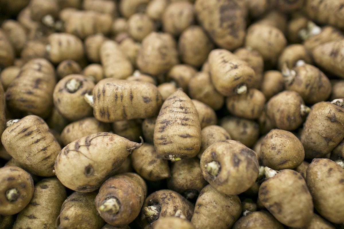 Fruit And Vegetable Market Report October 2015 Chervil Root
