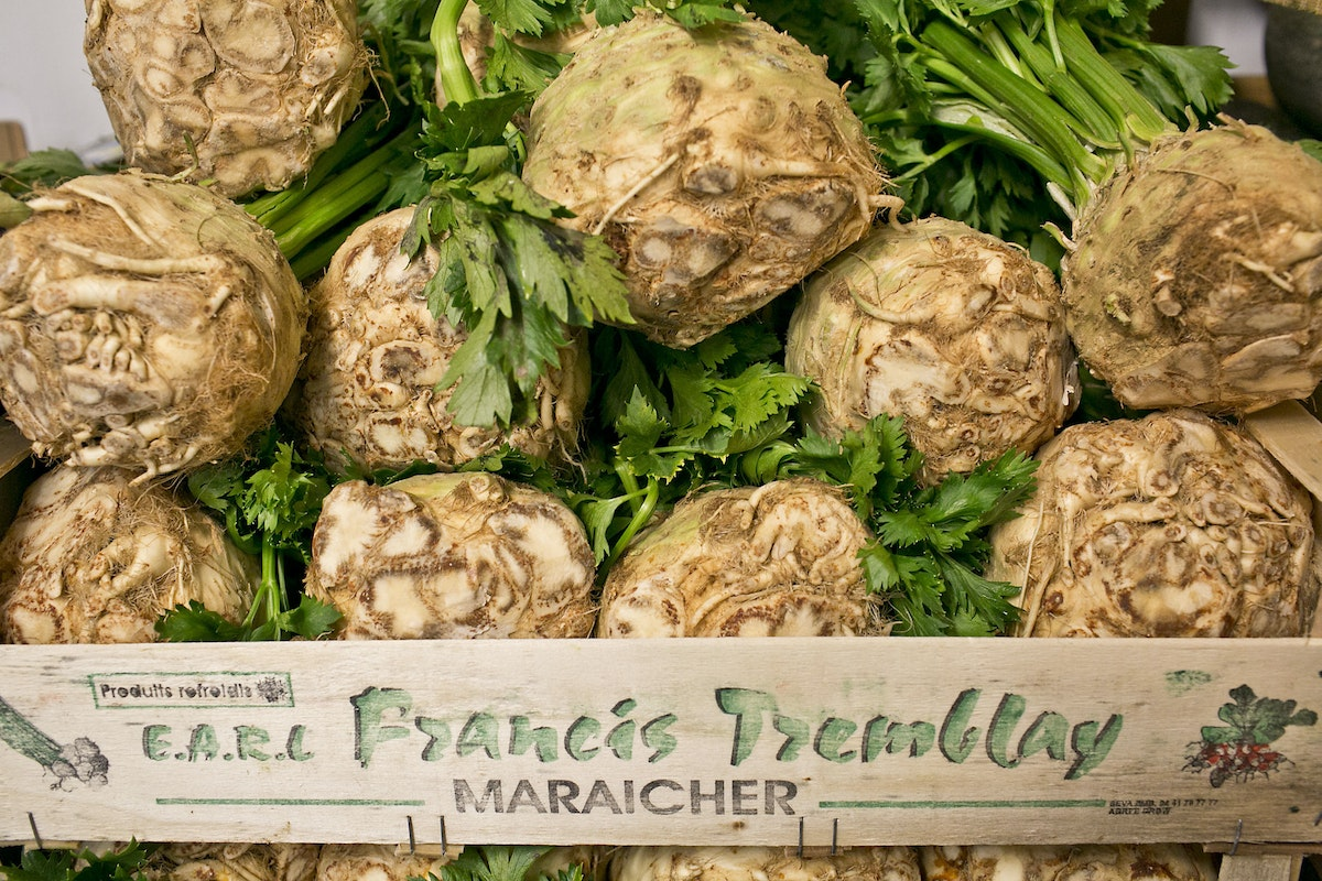 Fruit And Vegetable Market Report September 2014 Celeriac