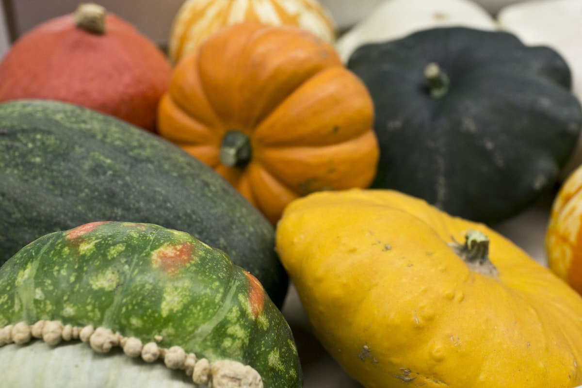 Fruit And Vegetable Market Report September 2014 Squashes