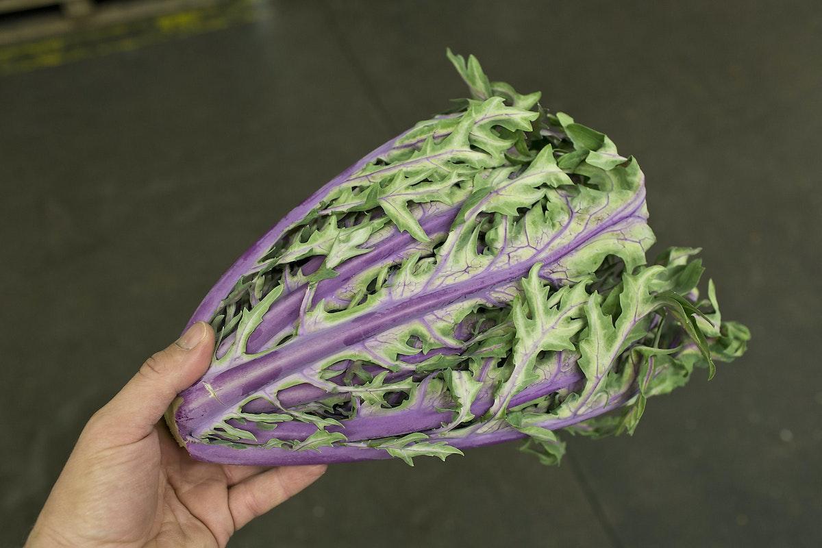 Fruit And Vegetable Market Report September 2015 Kale