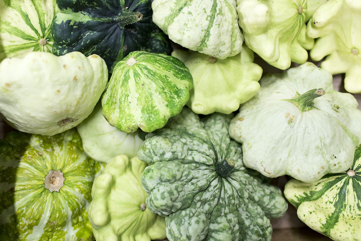 Fruit And Vegetable Market Report September 2015 Pattison Squash