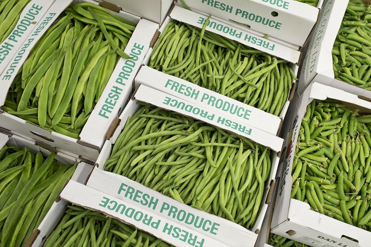 Fruit And Vegetable Market Report September 2015 Runner Beans
