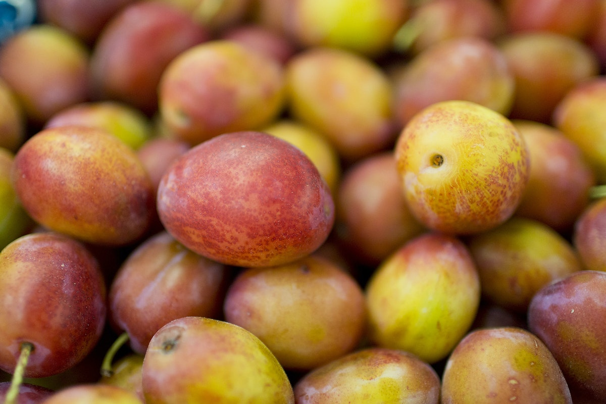 Fruit And Vegetable Market Report September 2015 Victoria Plums