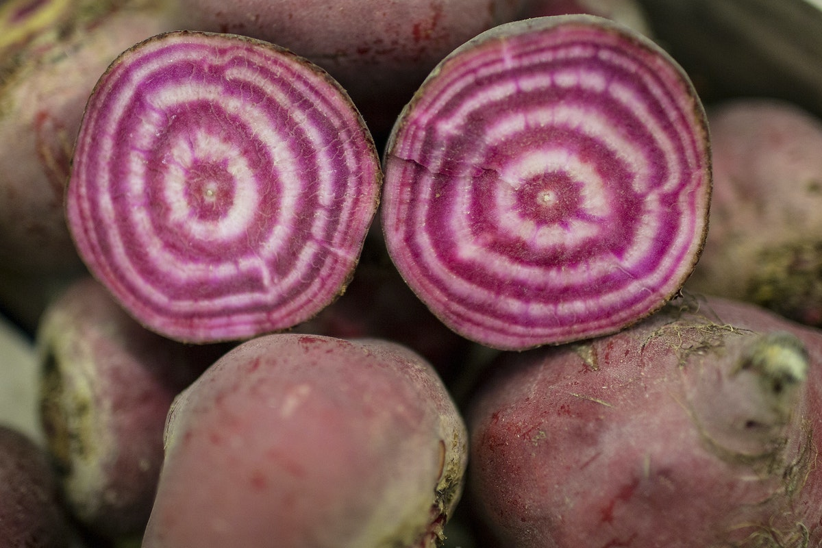 Fruit And Vegetable Market Report September 2016 Chioggia Beetroot