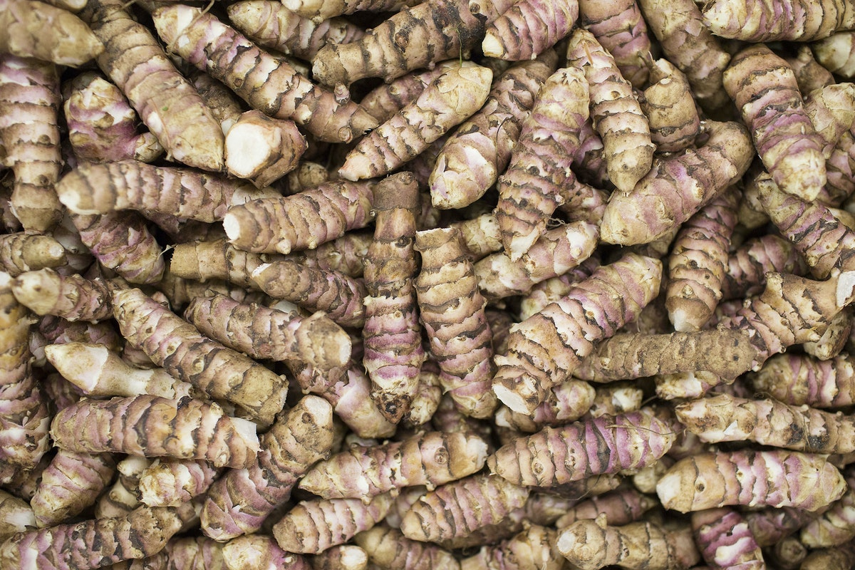 Fruit And Vegetable Market Report September 2016 Jerusalem Artichoke