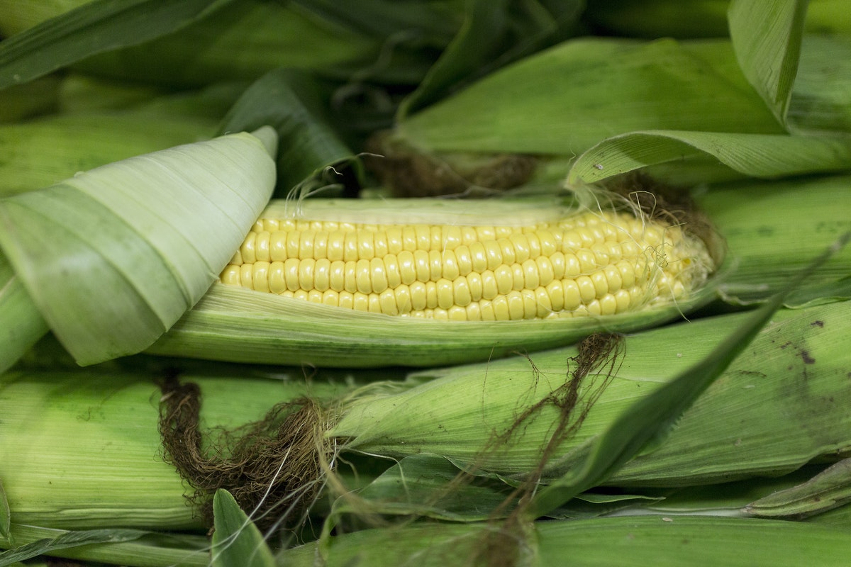 Fruit And Vegetable Market Report September 2016 Sweetcorn