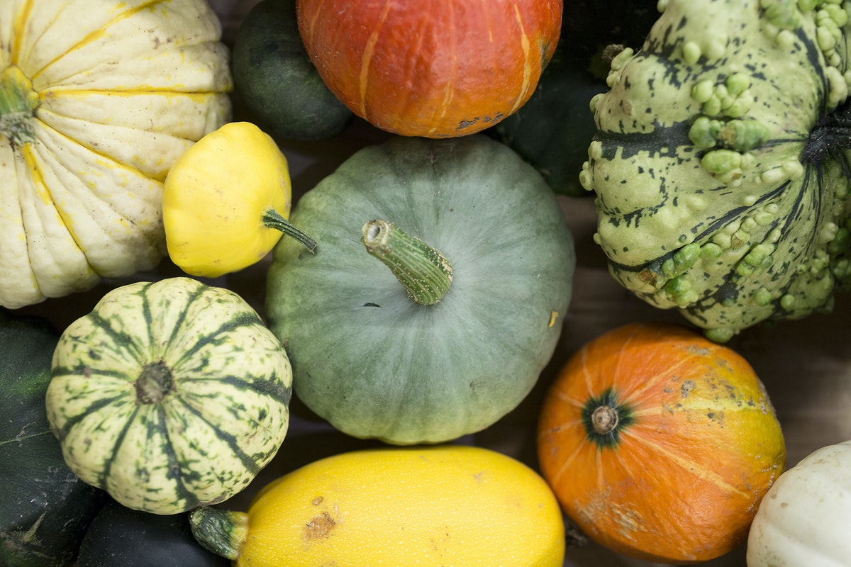 Fruit And Vegetable Market Report September 2016 Variety Squashes