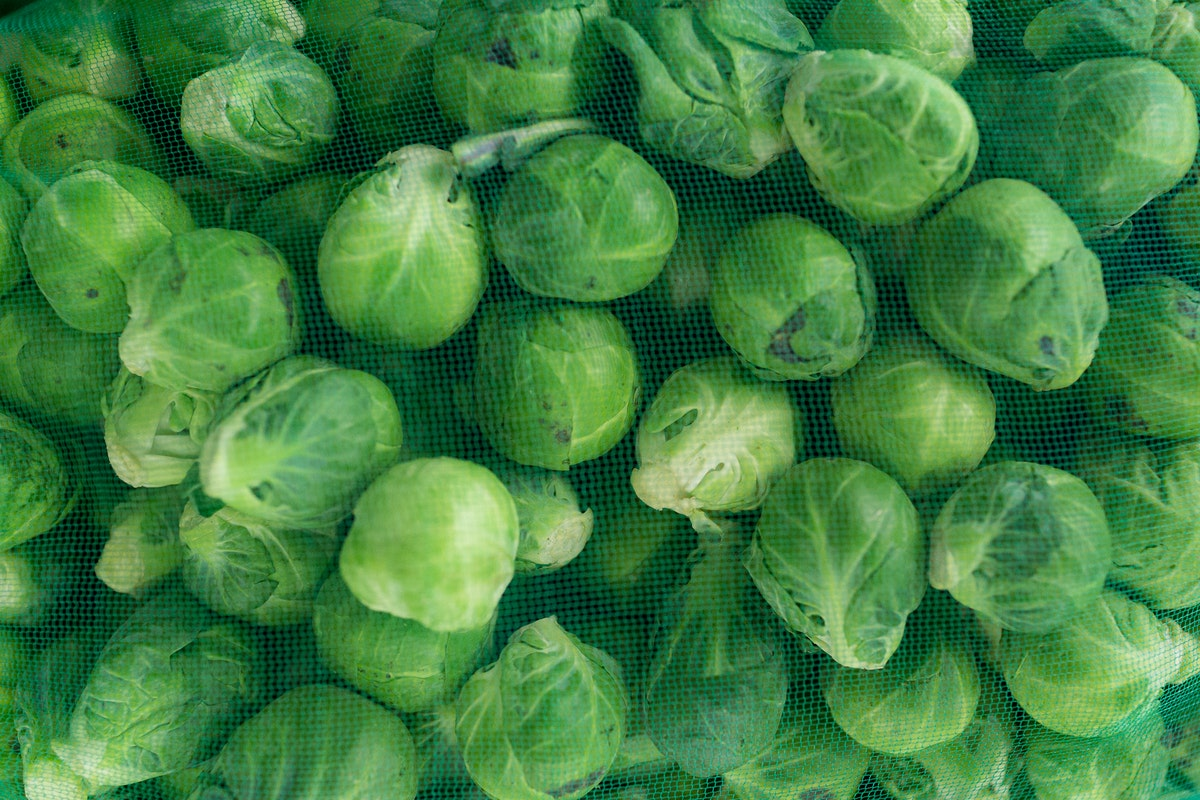 Fruit And Vegetable Market Report September 2017 Brussel Sprouts