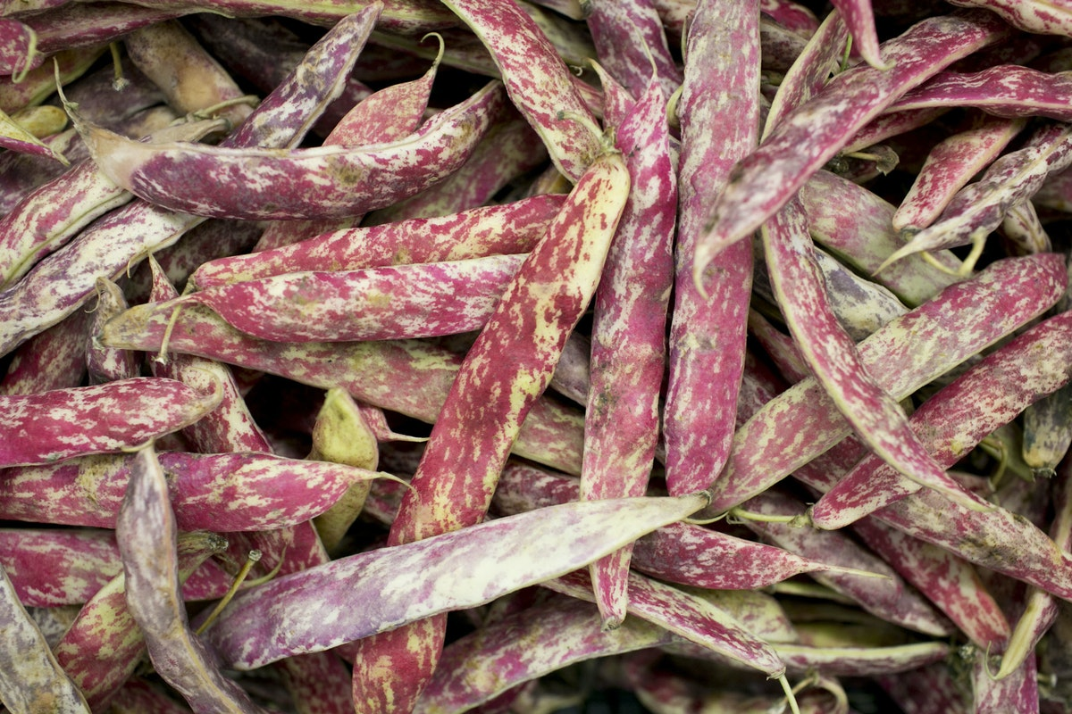 Fruit And Vegetables Market Report December 2015 Borlotti