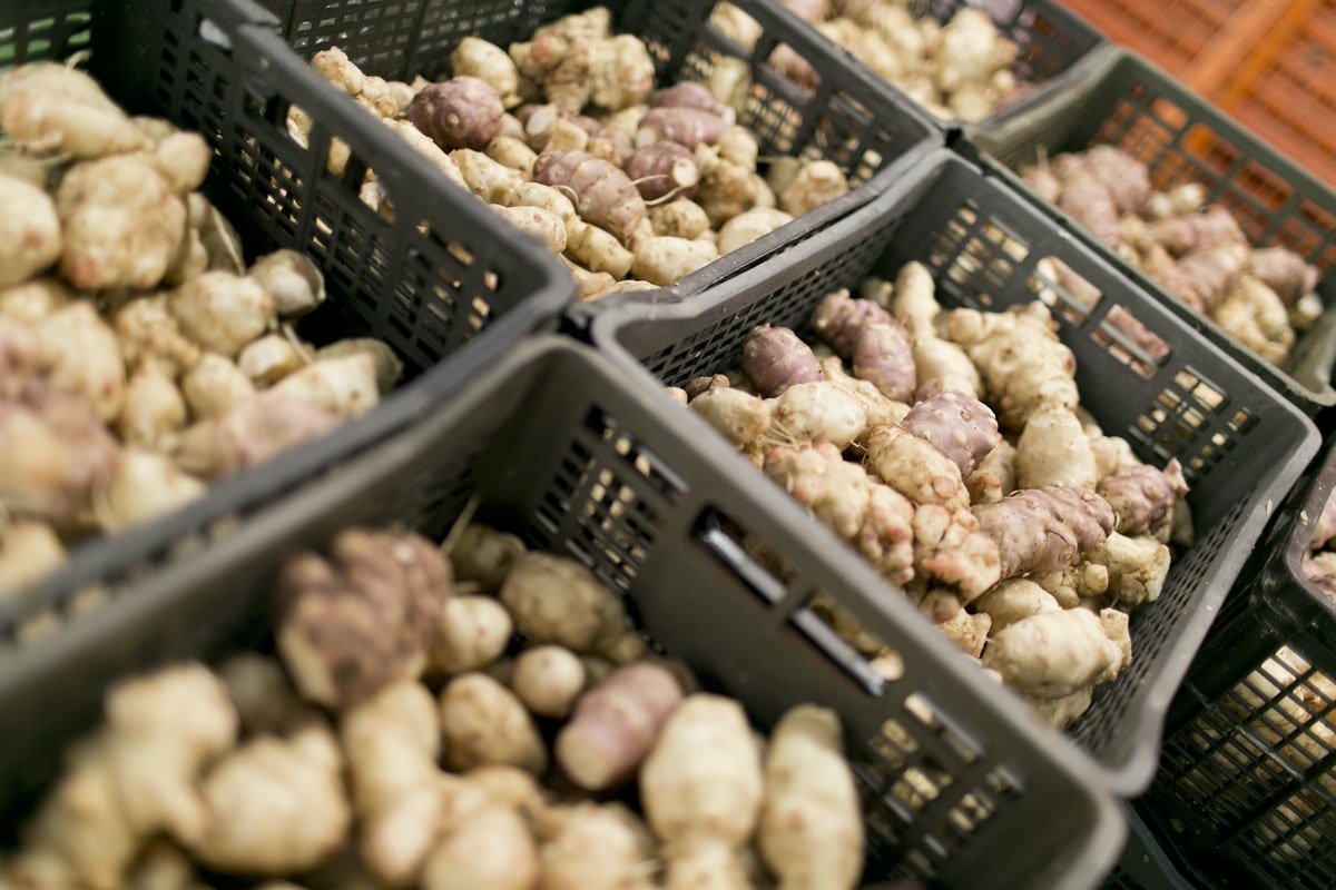 Fruit And Vegetables Market Report December 2015 Jerusalem Artichokes
