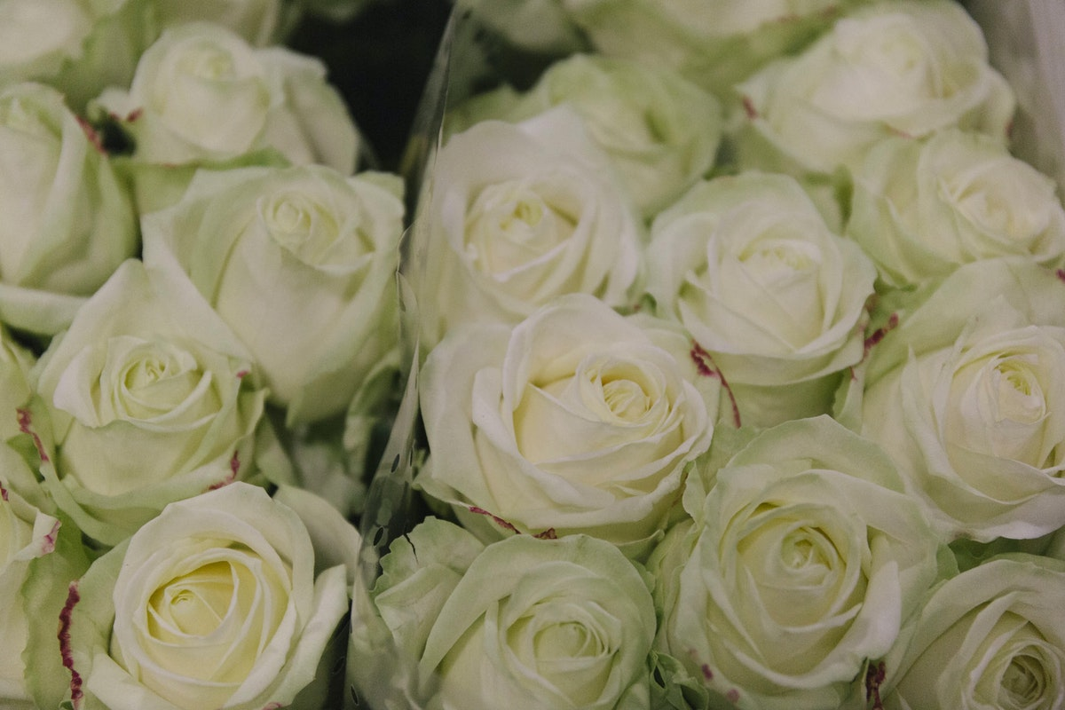 New Covent Garden Flower Market A Florists Guide To Christmas At The Flower Market Rona Wheeldon Flowerona November 2018 Avalanche Roses At Dg Wholesale Flowers