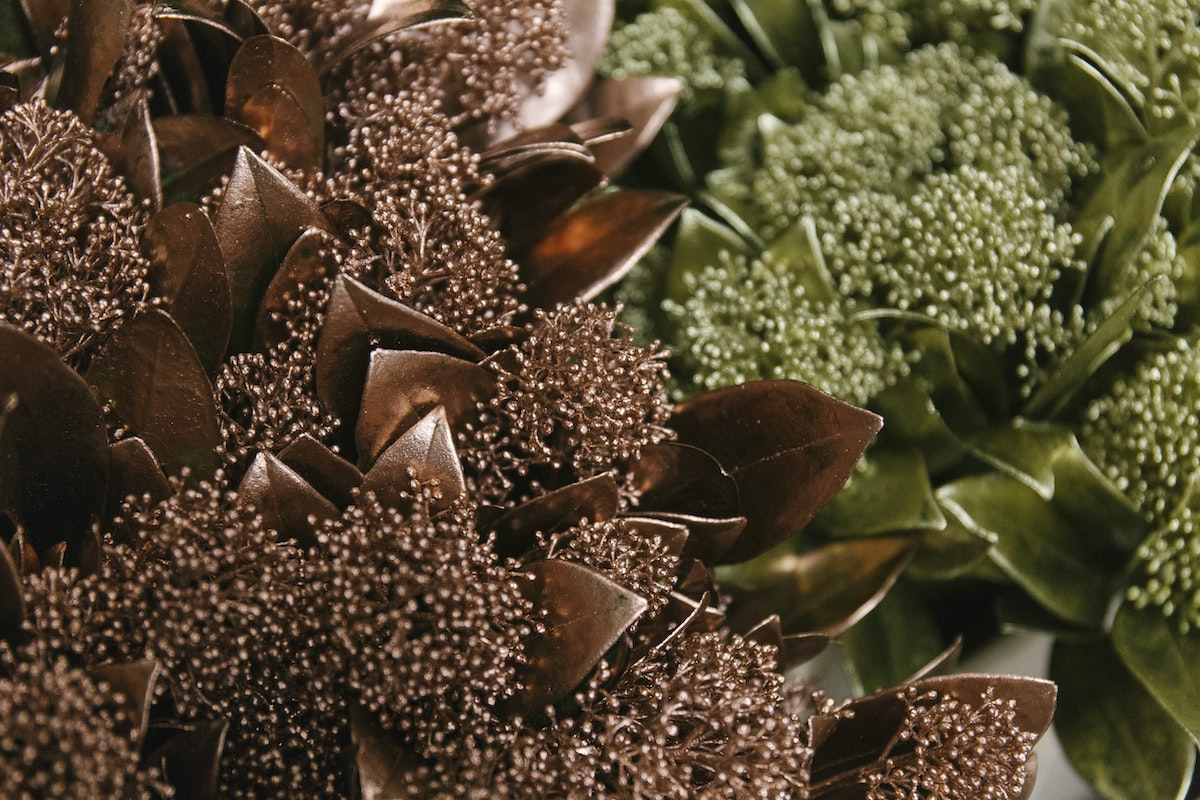 New Covent Garden Flower Market A Florists Guide To Christmas At The Flower Market Rona Wheeldon Flowerona November 2018 Coper And Gold Sprayed Skimmia At Dennis Edwards Flowers