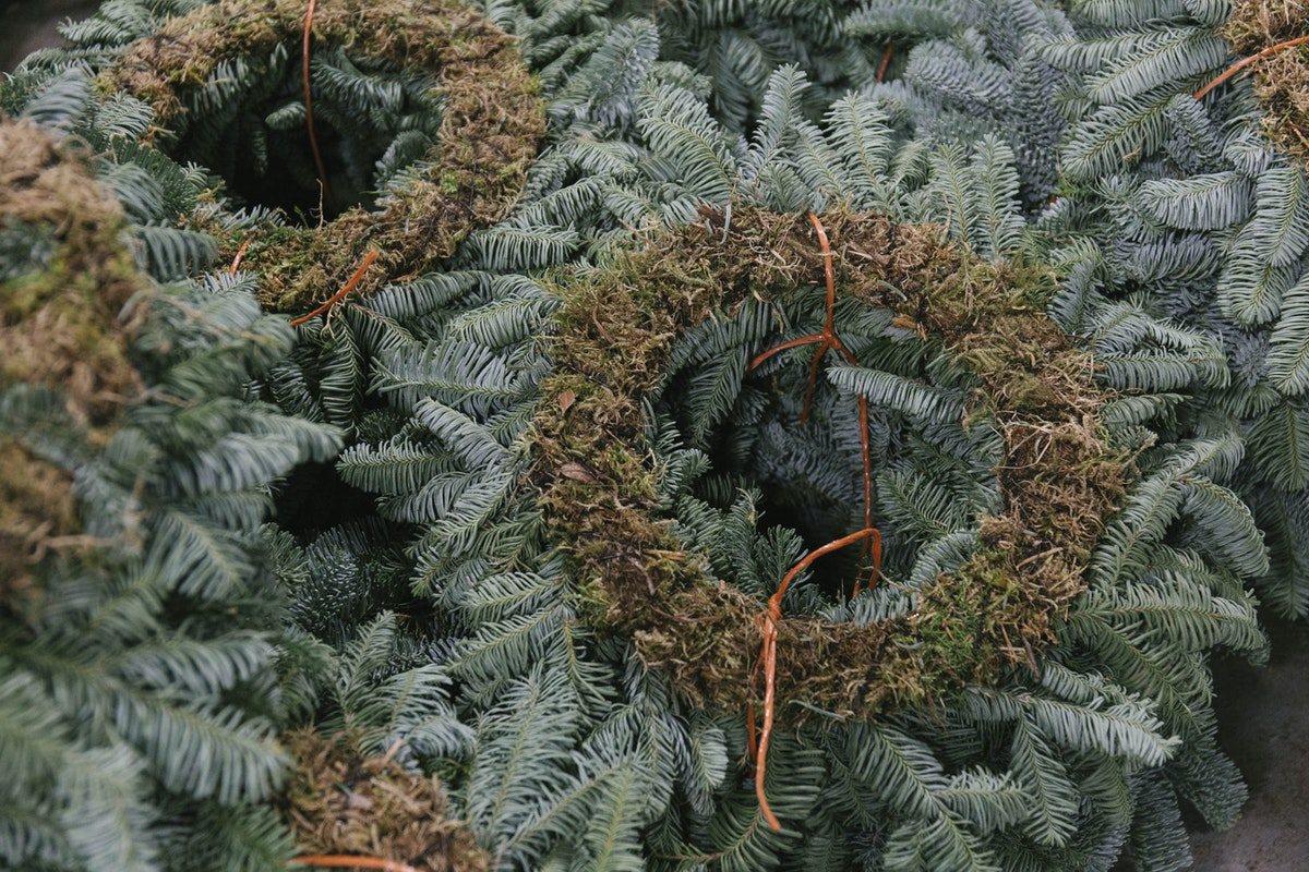 New Covent Garden Flower Market A Florists Guide To Christmas At The Flower Market Rona Wheeldon Flowerona November 2018 Pine Wreaths At Evergreen