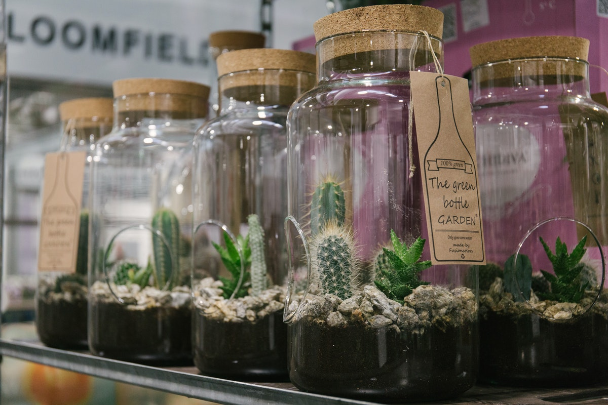 New Covent Garden Flower Market April 2018 In Season Report Rona Wheeldon Flowerona Bottle Gardens Aka Terrariums At Quality Plants