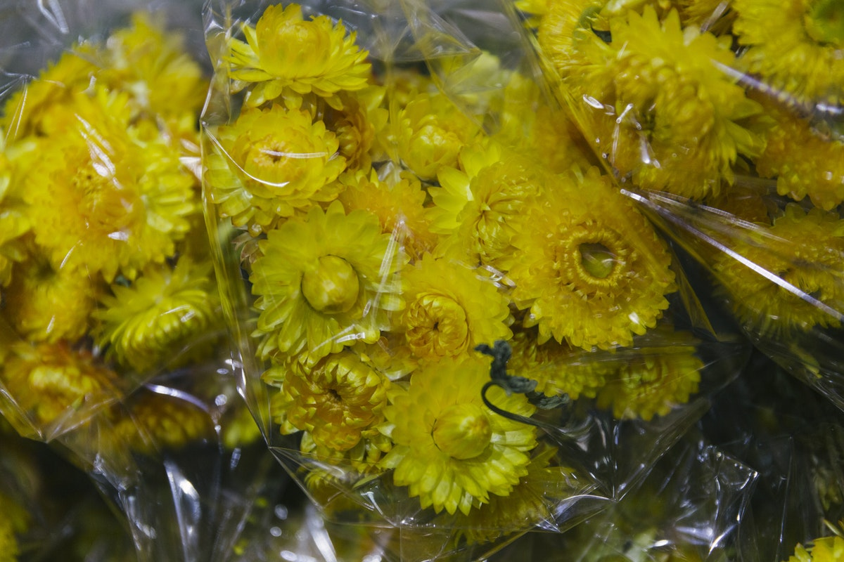 New Covent Garden Flower Market April 2019 A Florists Guide To Dried Flowers And Grasses Rona Wheeldon Flowerona Dried Yellow Helichrysum
