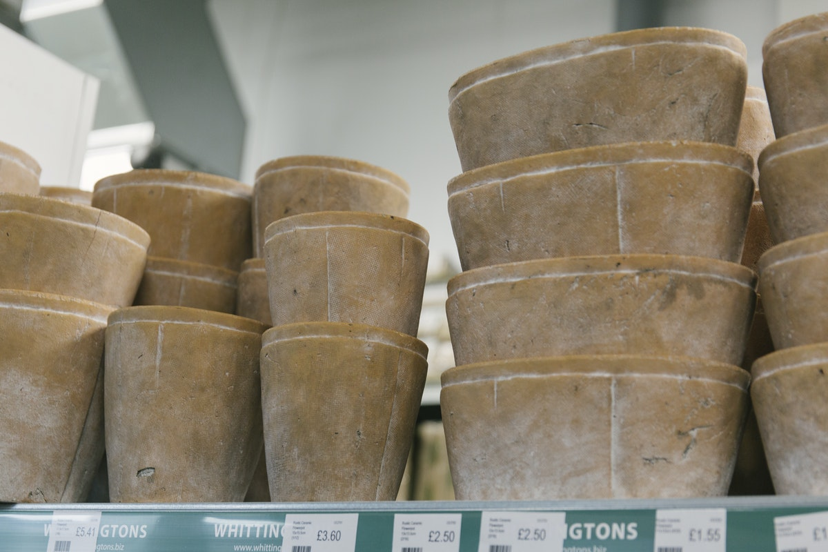 New Covent Garden Flower Market February 2019 In Season Report Rona Wheeldon Flowerona Assorted Rustic Ceramic Pots At Whittingtons