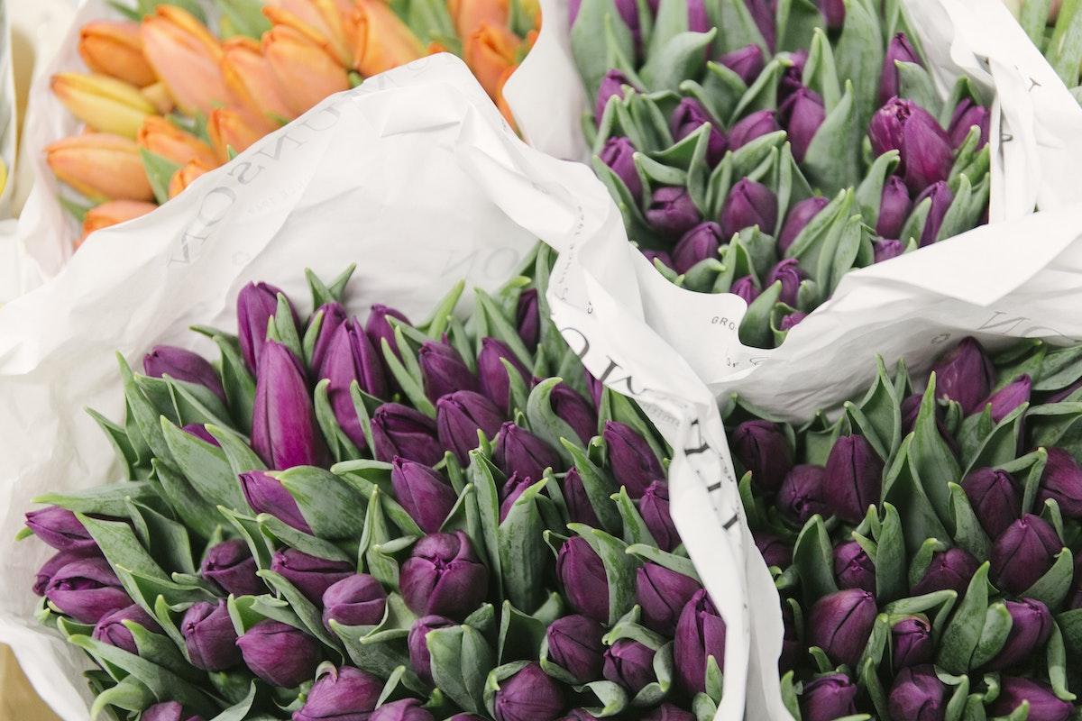 New Covent Garden Flower Market February 2020 In Season Report Rona Wheeldon Flowerona British Tulips At Pratley