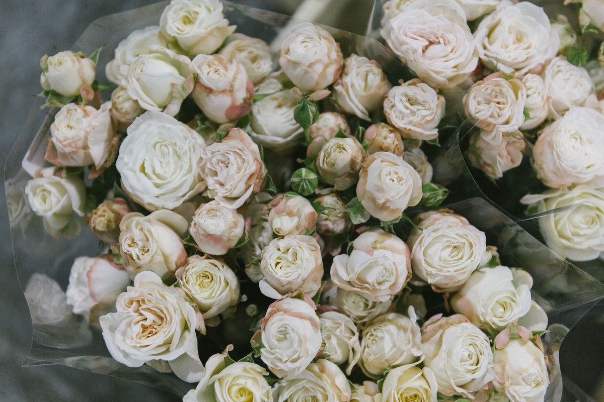 New Covent Garden Flower Market January 2020 In Season Report Rona Wheeldon Flowerona Bombastic Spray Roses At Bloomfield