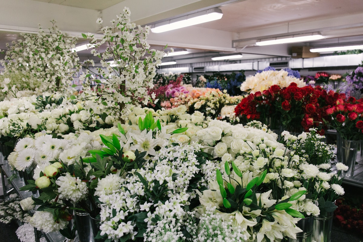 New Covent Garden Flower Market July 2018 In Season Report Rona Wheeldon Flowerona Silk Flowers At Whittingtons