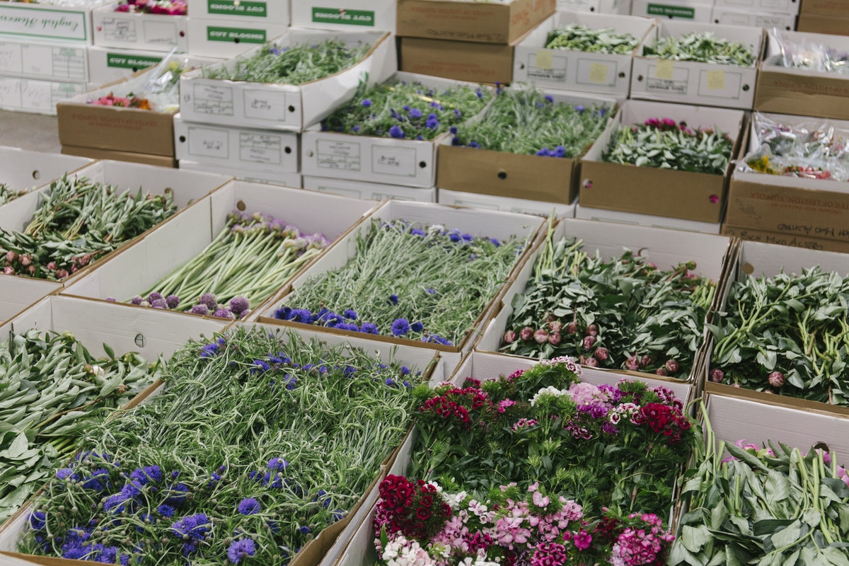 New Covent Garden Flower Market June 2019 A Florists Guide To British Flowers Rona Wheeldon Flowerona Boxes Of British Flowers At Pratley