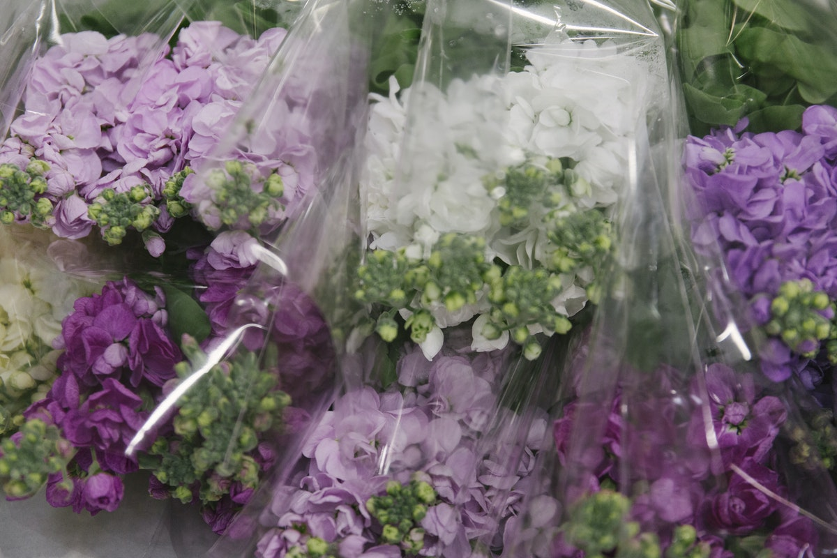 New Covent Garden Flower Market May 2019 In Season Report Rona Wheeldon Flowerona British Stocks At Pratley