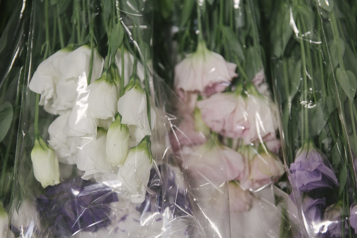 New Covent Garden Flower Market November 2019 In Season Report Rona Wheeldon Flowerona Briitsh Lisianthus At Pratley