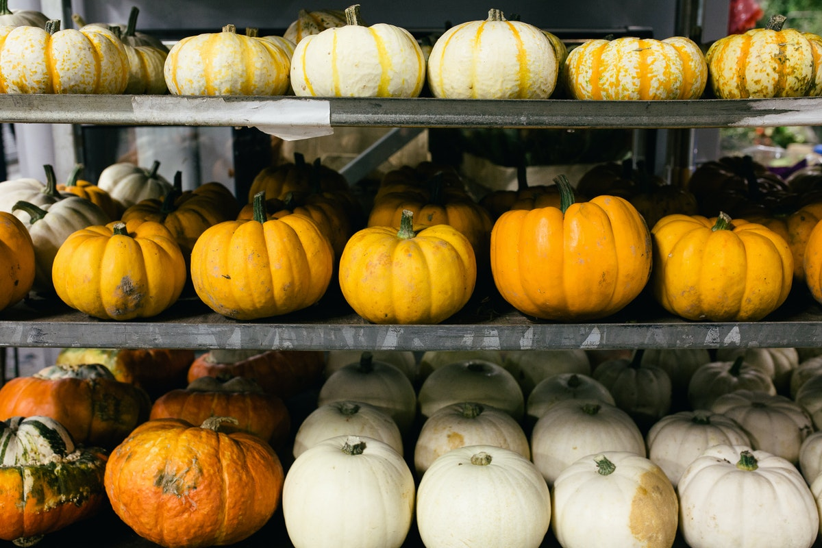 New Covent Garden Flower Market October 2017 Flower Market Report Pumpkins Gourds At Porters Foliage