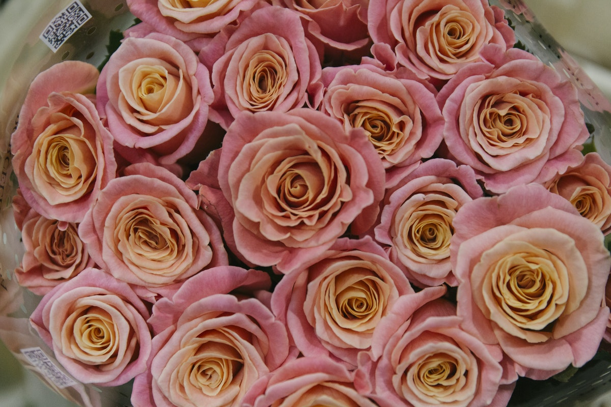 New Covent Garden Flower Market Report Living Coral Pantone Of The Year 2019 Miss Piggy Roses At Zest Flowers