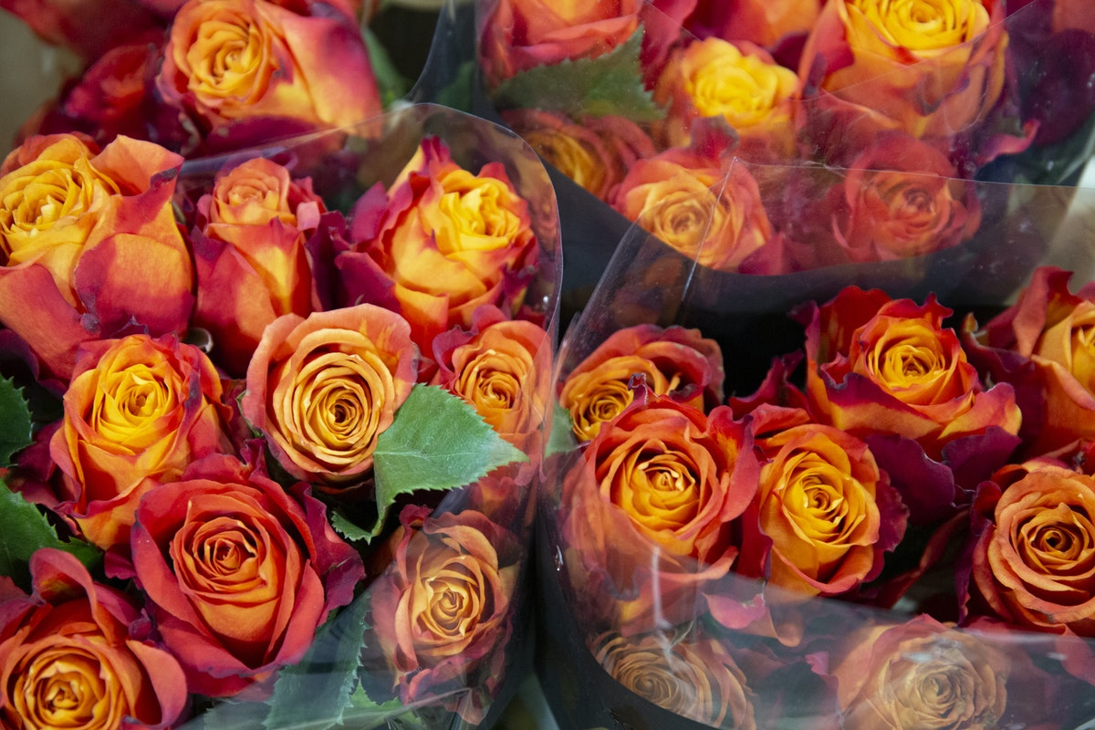 New Covent Garden Flower Market September 2019 A Florists Guide To Orange And Peach Roses Rona Wheeldon Flowerona Atomic Roses At J H Hart Flowers