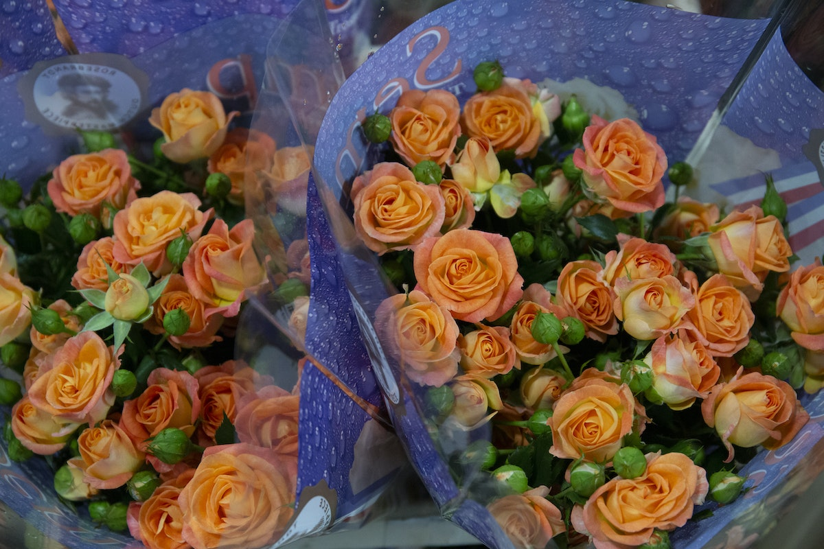 New Covent Garden Flower Market September 2019 A Florists Guide To Orange And Peach Roses Rona Wheeldon Flowerona Coral Bubbles Spray Roses At Dg Wholesale Flowers