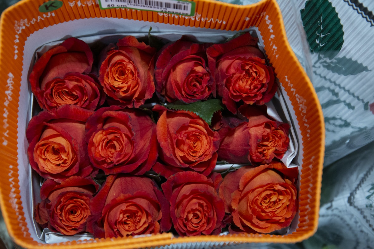 A Florist S Guide To Orange Peach Roses New Covent Garden Market