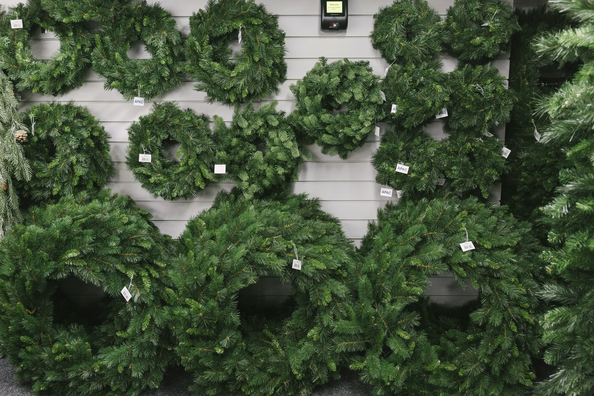 New Covent Garden Flower Market September 2019 In Season Report Rona Wheeldon Flowerona Artificial Christmas Wreaths At Whittingtons
