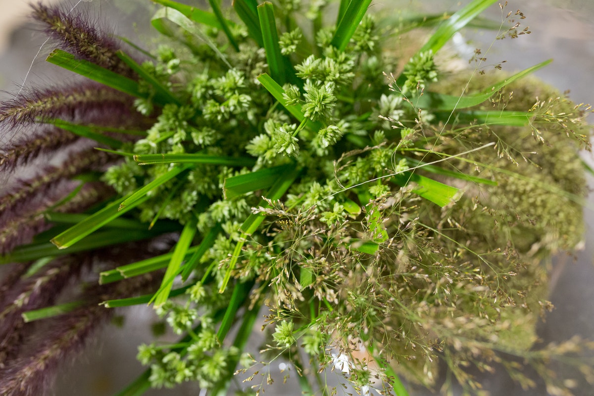 New Covent Garden Flower Market Product Profile Report August 2017 Grasses Wraps Of Mixed Grasses At Dennis Edwards Flowers