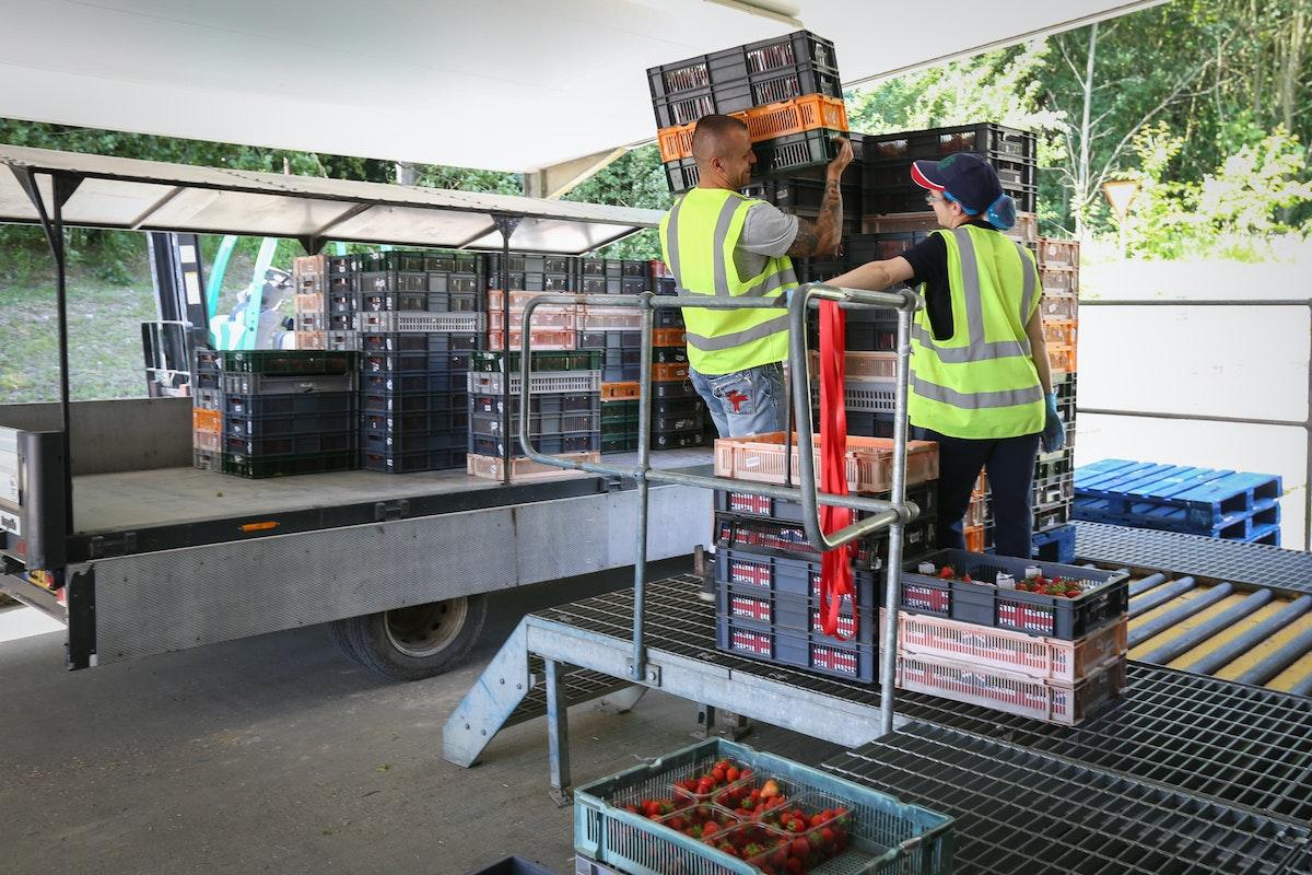 Fruit And Veg Grower Profile June 2017 Hugh Lowe Unloading