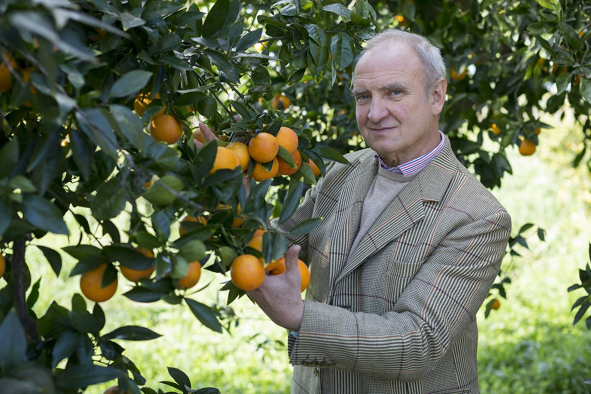 Fruit And Veg Product Profile January 2017 Blood Oranges Baron Von Freyberg
