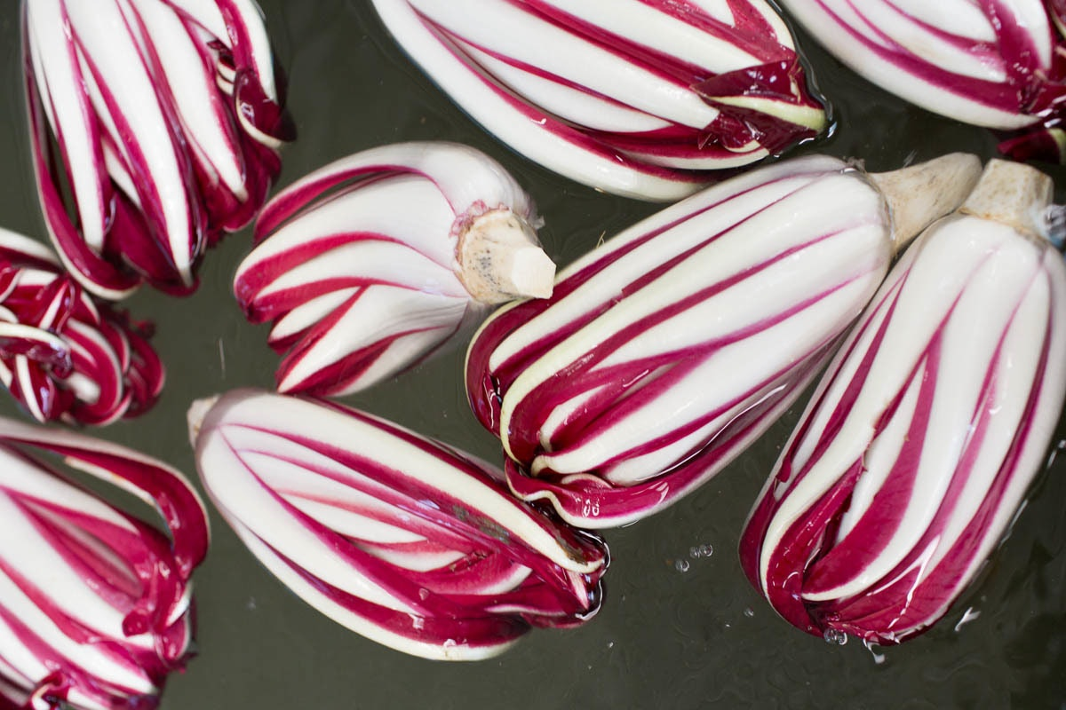 Fruit And Veg Market Chefs Guide To Radicchio Tardivo Floating Water