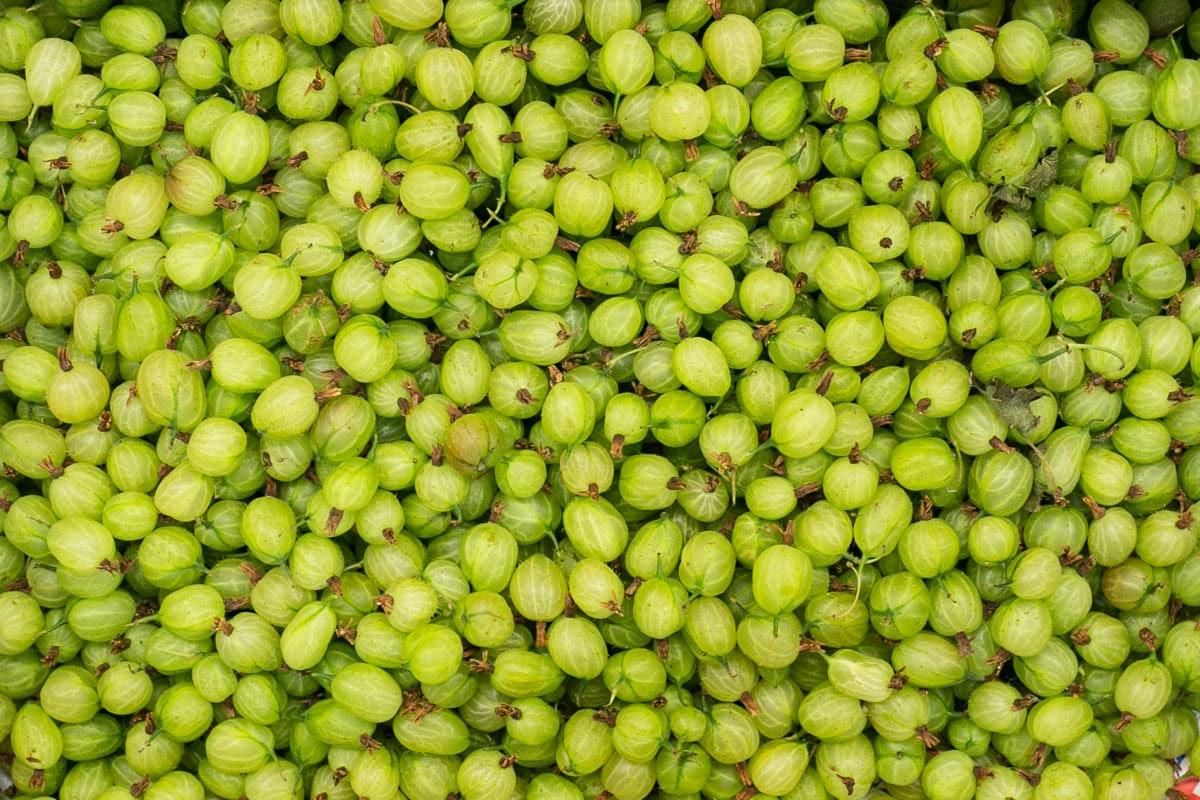 Fruit And Veg Market July 2019 Gooseberries