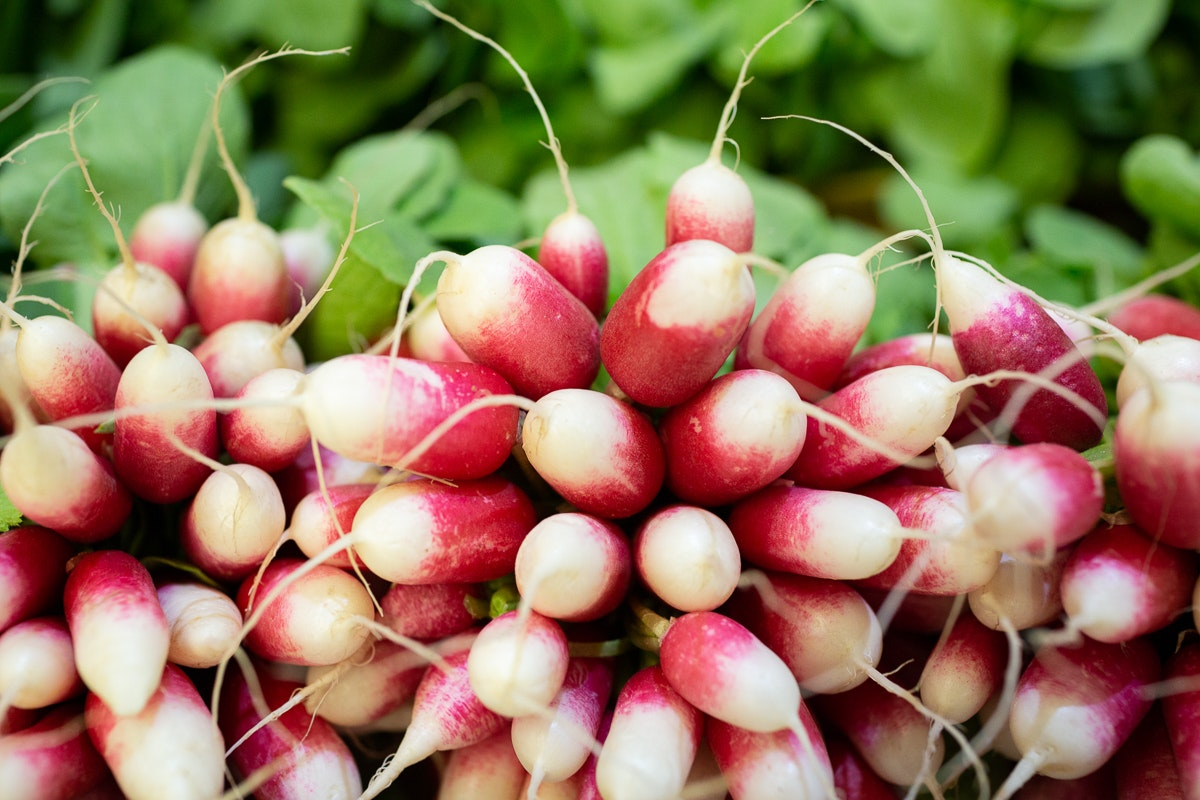 Fruit And Veg Market Report April 2019 Breakfast Radish