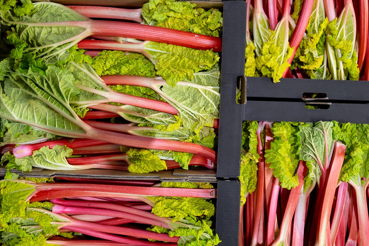 Fruit And Veg Market Report April 2019 Forced Rhubarb