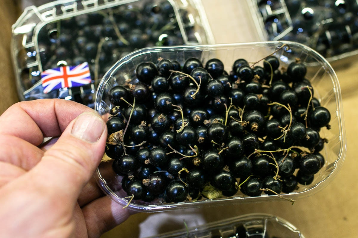 Fruit And Veg Market Report August 2019 Blackcurrants