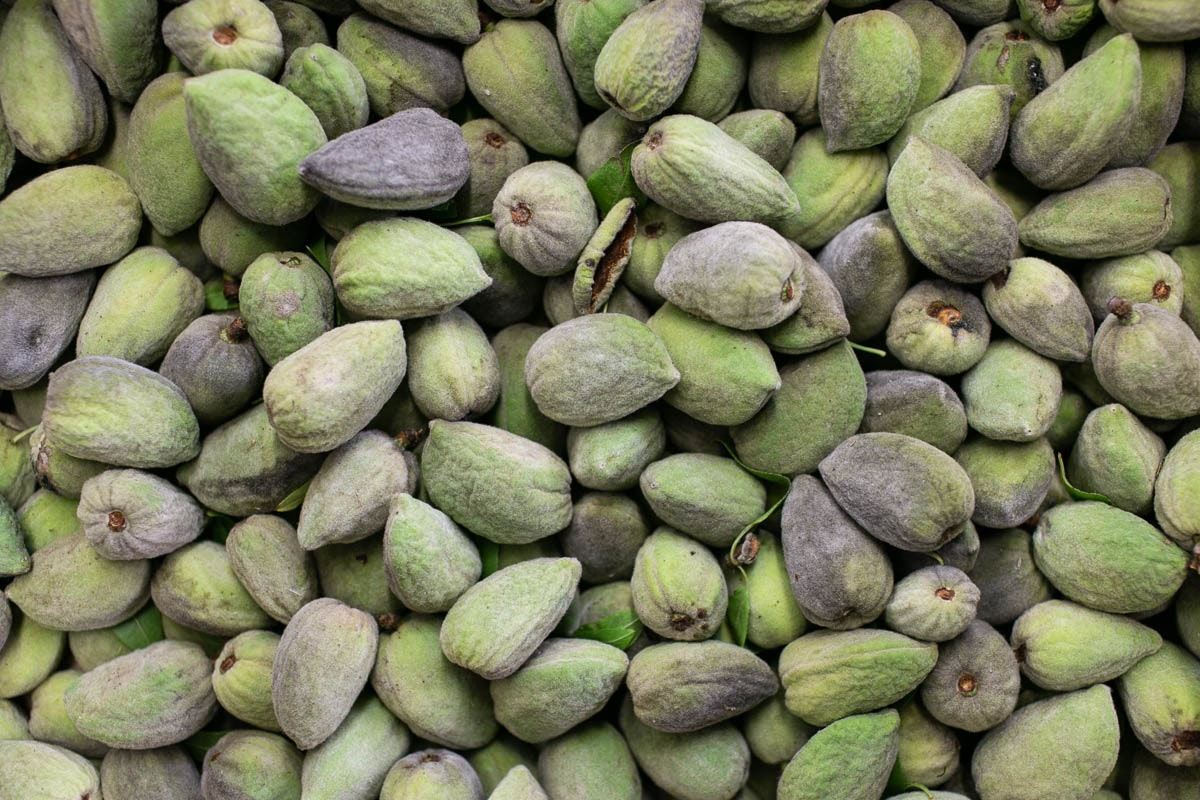 Fruit And Veg Market Report August 2019 Green Almonds