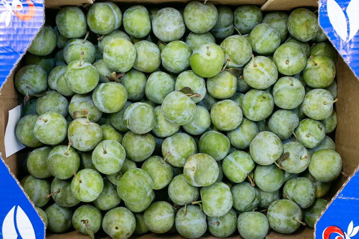 Fruit And Veg Market Report August 2019 Greengages