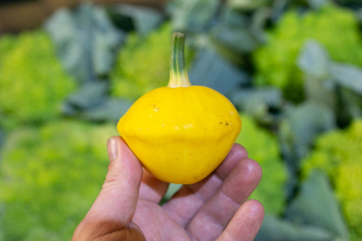 Fruit And Veg Market Report August 2019 Patty Pan