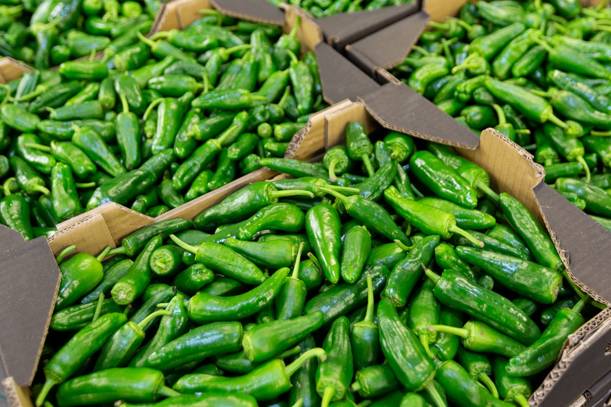Fruit And Veg Market Report February 2019 Padron Peppers
