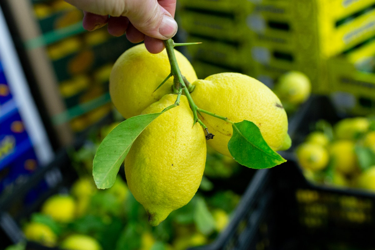 Fruit And Veg Market Report January 2019 Lemons