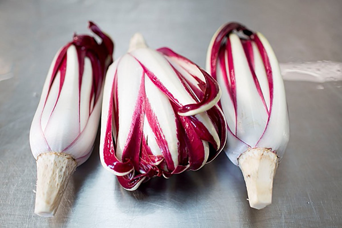 Fruit And Veg Market Report January 2019 Radicchio
