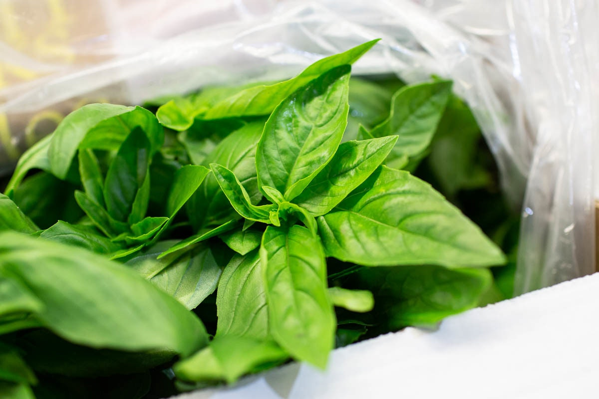 Fruit And Veg Market Report June 2019 Basil